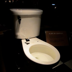 Toilet drinking fountain