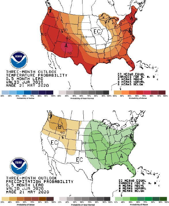 Seasonal forecast