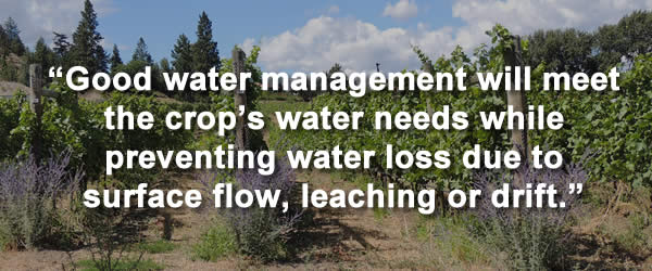 """Good water management will meet the crop's water needs while preventing water loss due to surface flow, leaching or drift."""
