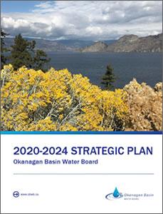 2020-2024 strategic plan