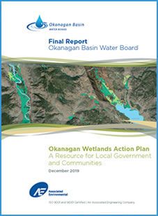 Wetlands Strategy