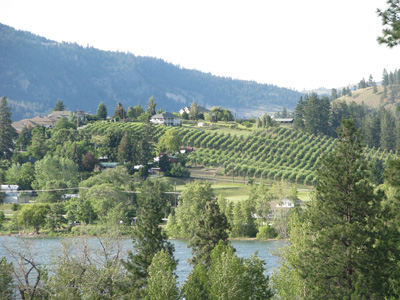 Wood Lake and Oyama orchard - photo by Karen Miller