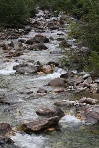 Fish-bearing stream